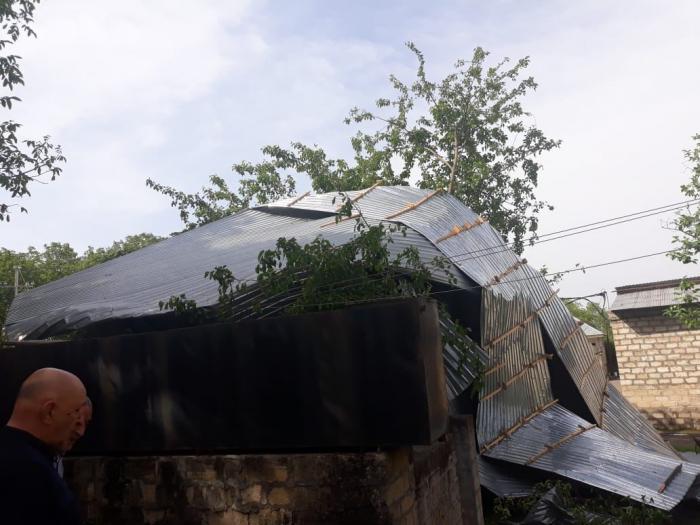 Külək bəzi rayonlarda elektrik təsərrüfatına ziyan vurub