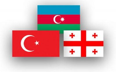 جلسة عبر الإنترنت لبرلمانات ثلاث الدول ستعقد