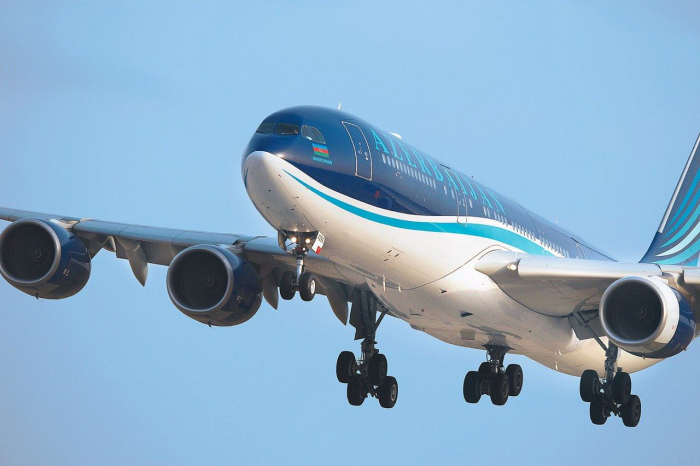 Azerbaijan Airlines to resume only domestic flights so far