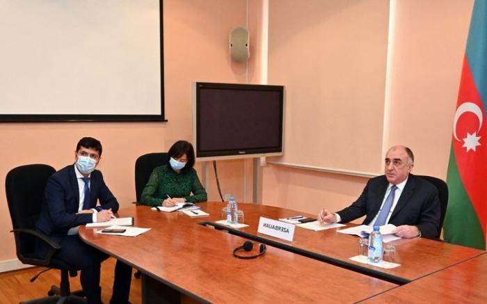 Azerbaijani FM: Armenia undermines fundamentals of Eastern Partnership