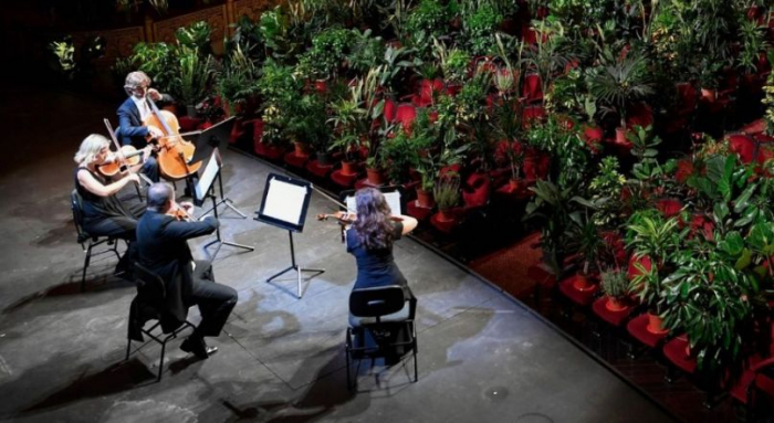 Barcelona opera reopens with performance for more than 2000 potted plants –   NO COMMENT