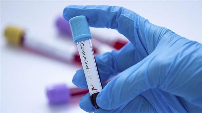 Azerbaijan confirms 513 new COVID-19 cases