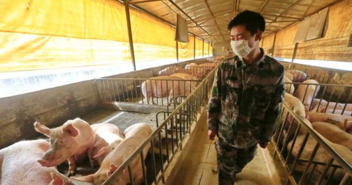 La puerta para que entre el virus gripal hallado en China «ya está abierta»
