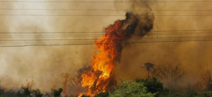Brésil:   pire mois de juin en 13 ans pour les incendies en Amazonie