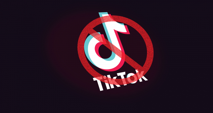 Indian video-sharing apps surge in popularity on TikTok ban
