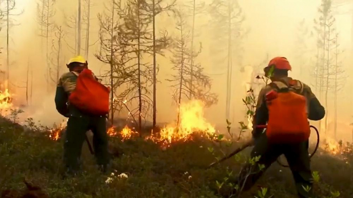 Forest fires burn out of control in Russia