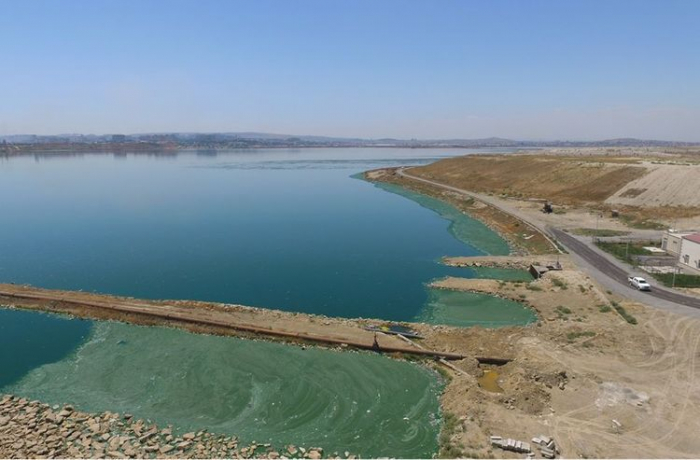 """Fabrikin tullantı suları Böyükşor gölünə tökülür -  """"Azərsu"""""""