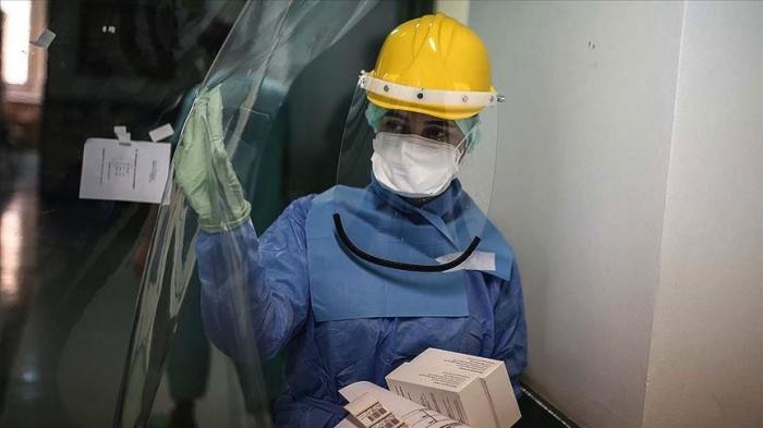 UN warns of more animal-to-human viruses