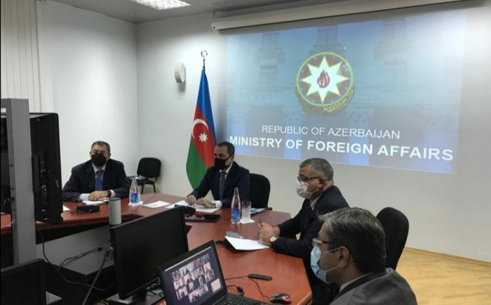Azerbaijani FM holds videoconference with heads of Azerbaijani diplomatic missions abroad