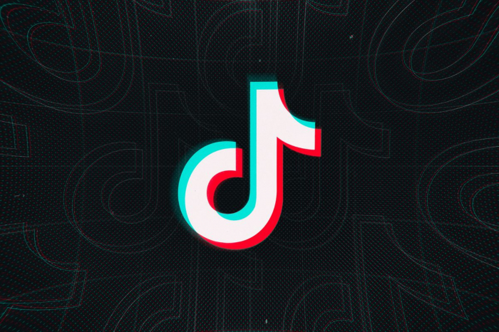 Japanese ruling Partyto urge government to restrict TikTok use