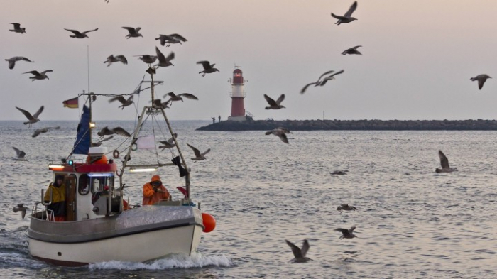 Nord- und Ostsee laut Bericht in schlechtem Zustand