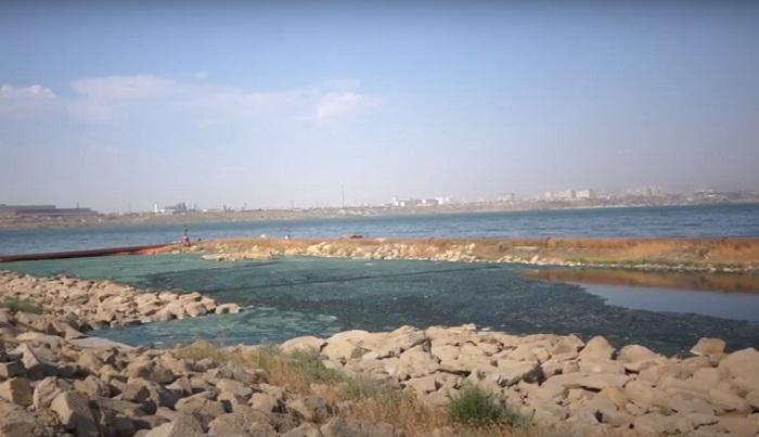 Böyük Şor gölünün 50 faizi çirkabdan təmizlənib -