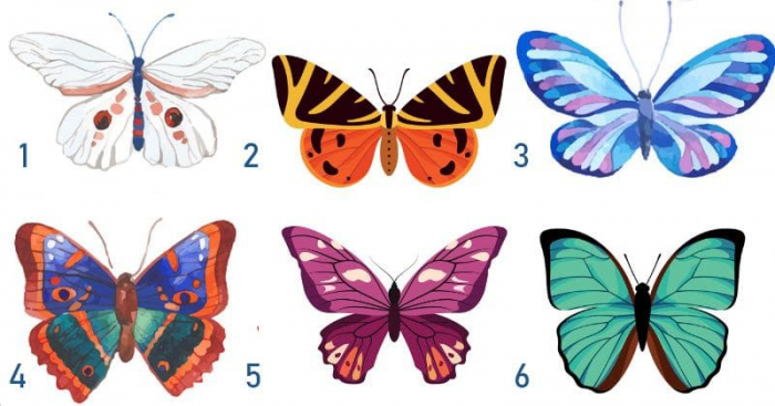 Butterfly you pick reveals your personality -  TEST