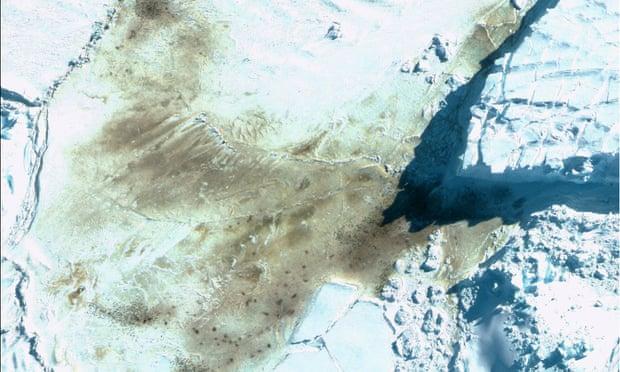 Satellite images spot emperor penguin colonies in Antarctica