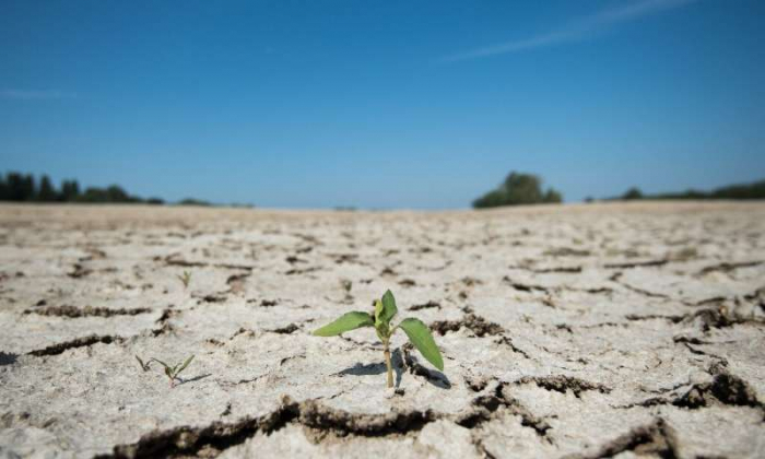 Climate change to bring longer droughts to Europe, study warns