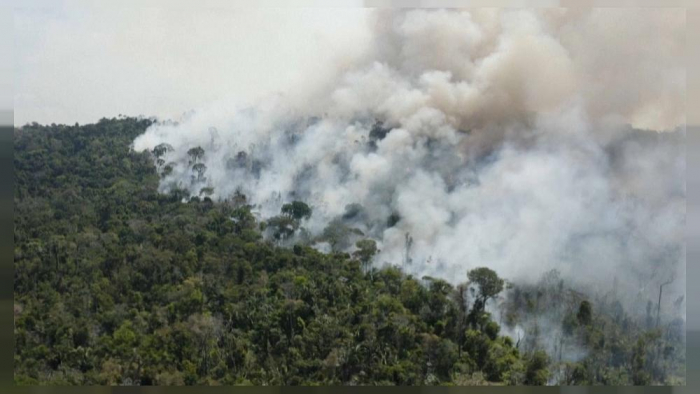 The Amazon rainforest destroyed by international fires -    NO COMMENT