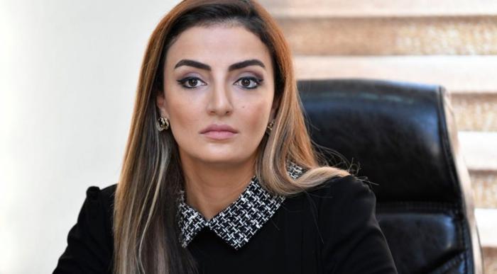 Article written by Azerbaijani MP published on the Croatian media