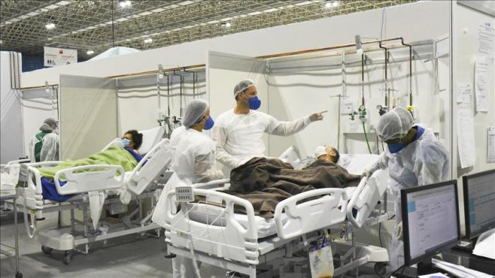 Brazilyada virus tüğyan edir