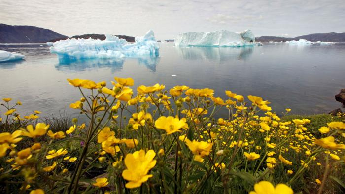 El récord de temperatura más baja en Groenlandia, cercano a los -70 °C