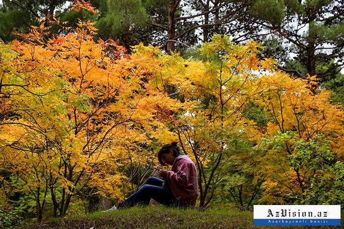 يأتي الخريف إلى أذربيجان الأسبوع المقبل