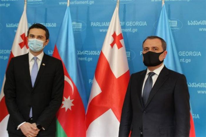 Nazir Gürcüstanda erməni təxribatlarından danışdı