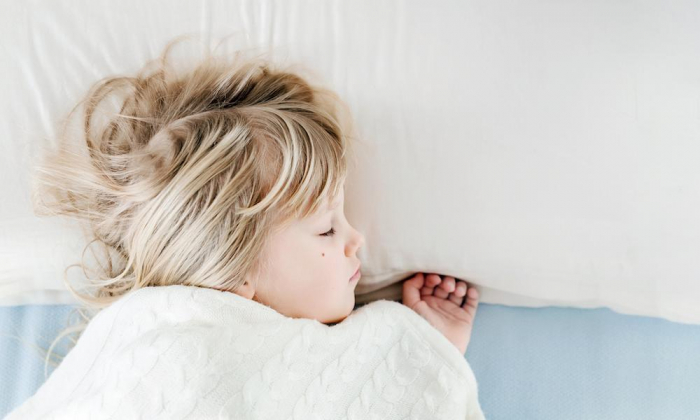 Why tiny humans and animals sleep so much