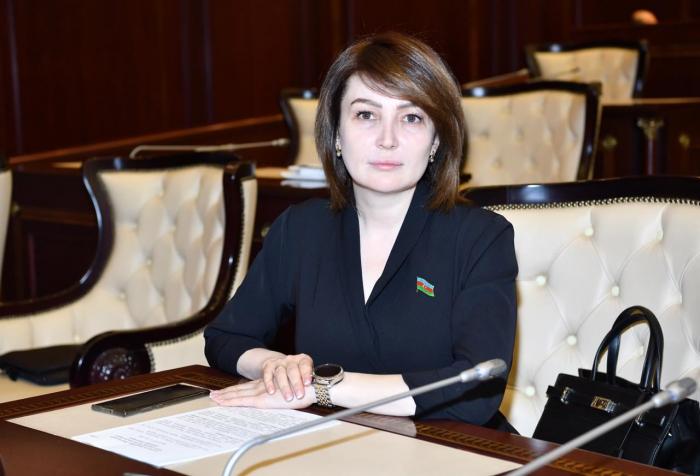 """""""Ermənistan hərbi təxribatları əvvəldən planlaşdırmışdı""""-  Deputat"""