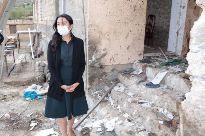 Ombudsman Sabina Aliyeva visited Gashalti village of Naftalan