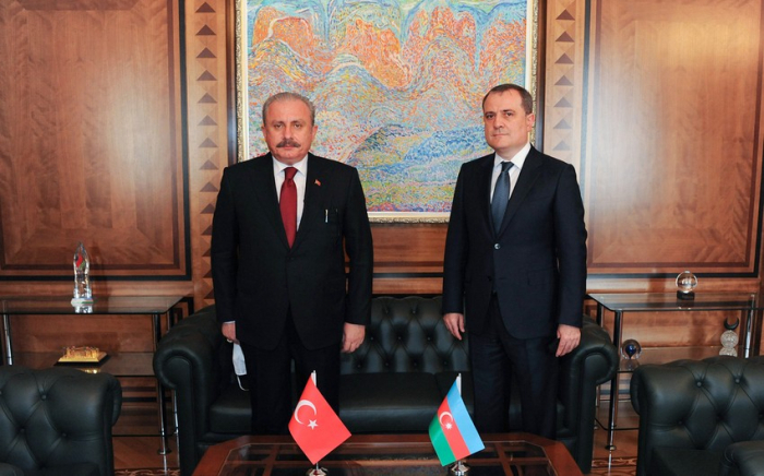 Azerbaijani FM meets with Speaker of the Turkish Parliament