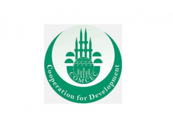 OIC issues statement on Islamophobic statements made by French officials