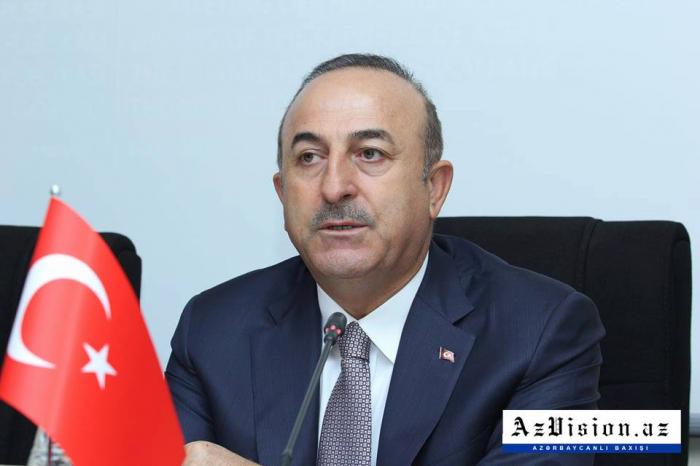 Turkey always stands by Azerbaijan – FM Cavusoglu