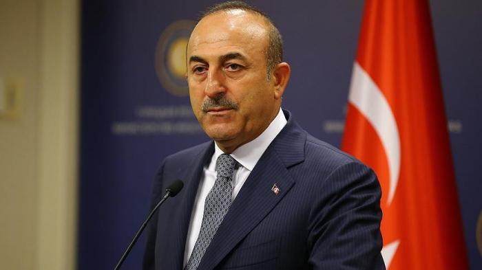 Mevlut Cavusoglu thanks Azerbaijan for offering assitance following earthquake in Izmir