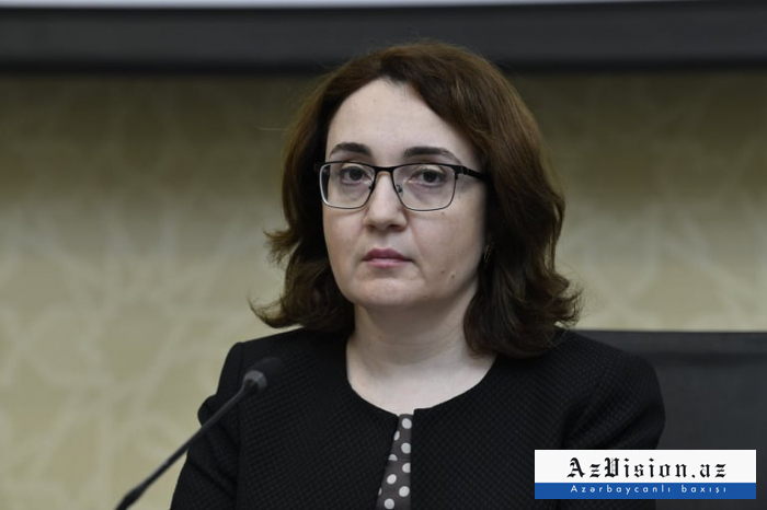 Operational Headquarters under Azerbaijani Cabinet of Ministers holds briefing -