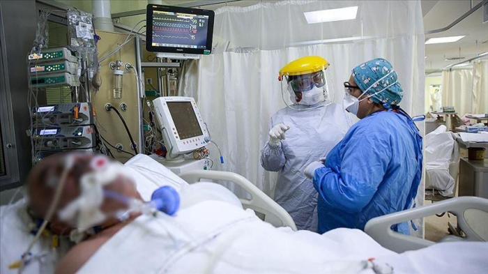 Global coronavirus cases exceed 50 million