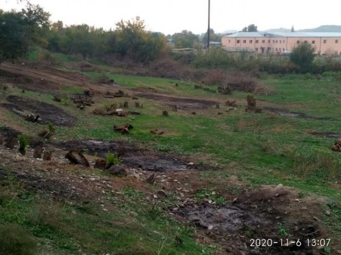 Erməni vandallığını sübut edən faktlar -   Monitorinqin nəticələri açıqlandı