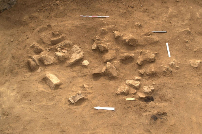Hikmet Hajiyev: Artifacts found during archaeological excavations in Aghdam transported to Armenia