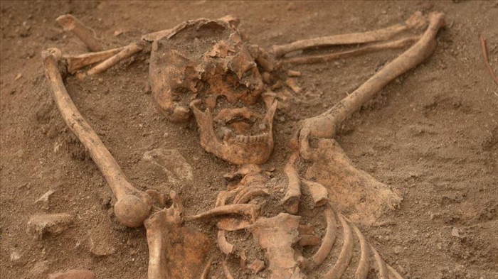 113 bodies found in Mexico mass grave