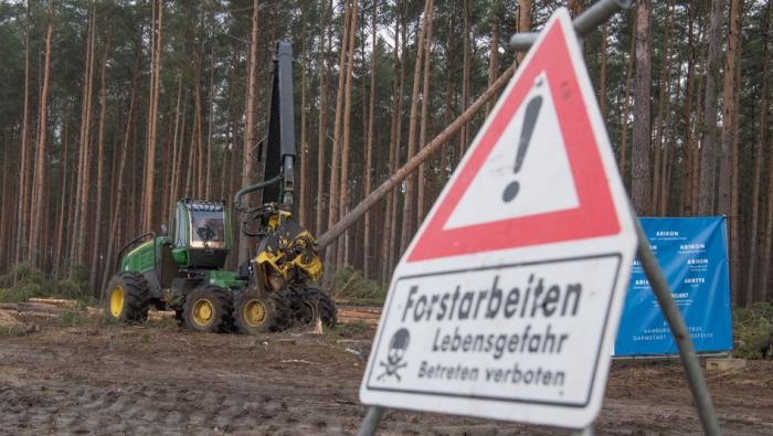 Brandenburg wartet auf Antrag für Teslas Rekordfabrik