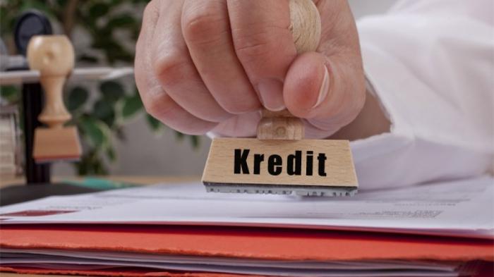 Ölkəmizdə kredit qoyuluşları azalıb