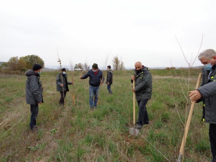 Tree-planting campaigns heldin some villages of Gubadli region