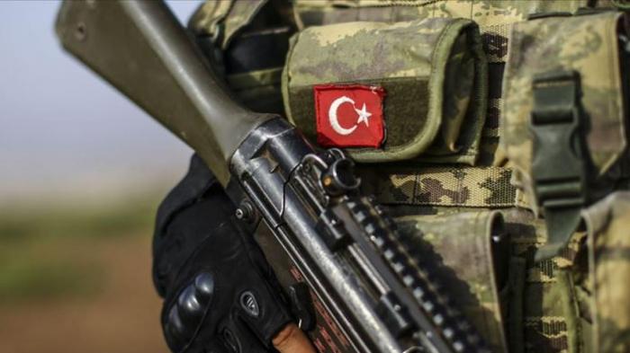 Türkiyə ordusu 80 terrorçunu zərərsizləşdirdi