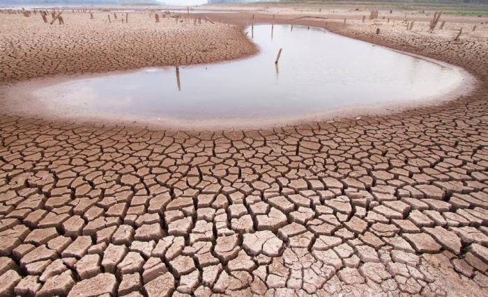 Réchauffement climatique: laMongolierisque de se transformer en désert