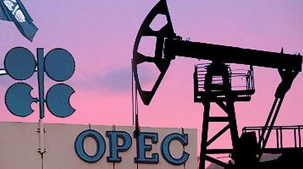 OPEC+ supports 0.5 mln bpd output growth since January, monthly meetings