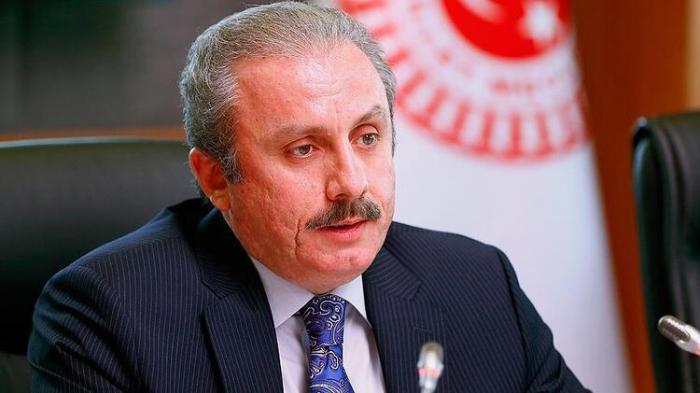 Turkish parliament head calls French Parliament