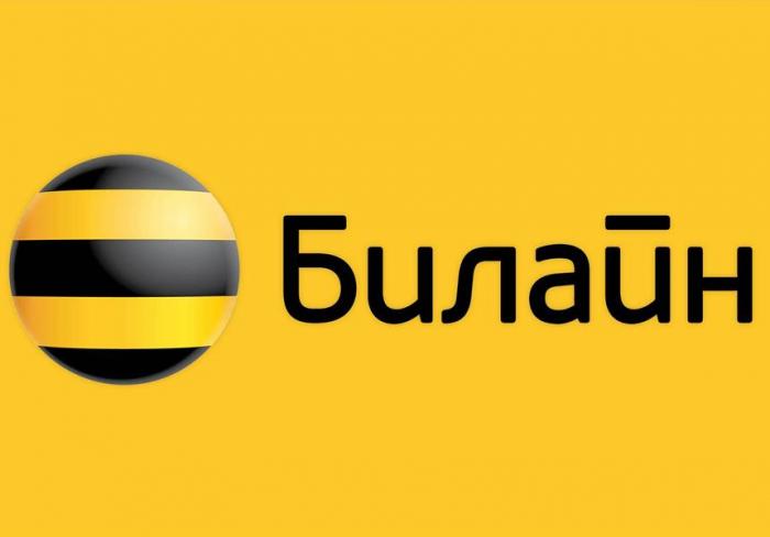 Beeline mobile operator working in Khankendi city is false information, says Russian media