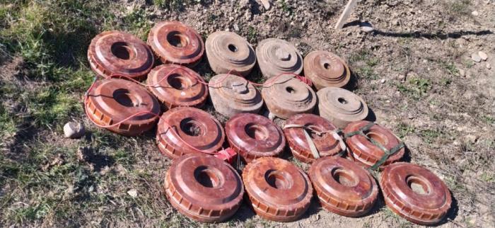 ANAMA encuentra 270 municiones sin detonar en las tierras liberadas