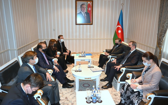 Azerbaijan FM mets withheads of Turkish Council, TURKSOY
