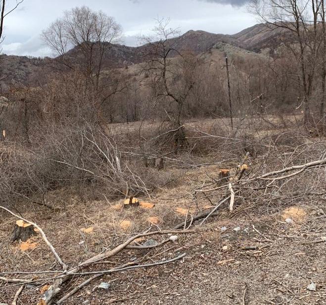 Viceministro de Ecología y Recursos Naturales: Los rastros del terror ambiental cometidos por los armenios son desgarradores