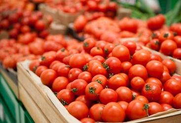 Se negociará la situación del suministro de tomate a Rusia desde Azerbaiyán