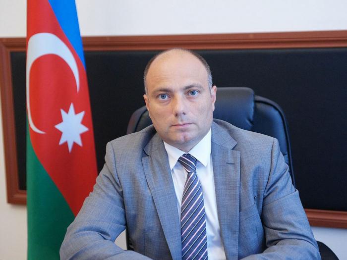 Armenia destroyed 95 percent of historical, cultural monuments in Karabakh - Anar Kerimov